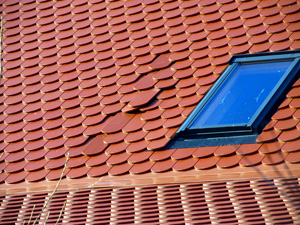 Damaged Skylight & Roof Leak Repair in South Central Wisconsin